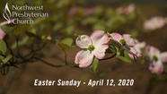 """While It Was Still Dark"" Easter Sunday - April 12, 2020"